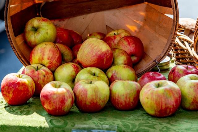 Ely Apple Festival in Cambridgeshire